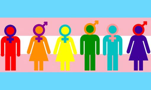Eleitores transgêneros e travestis poderão usar nome social, decide TSE